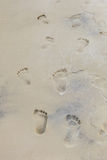 Footprints on the sand Royalty Free Stock Images