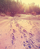 Footprints on sand, retro stylized nature background Royalty Free Stock Image
