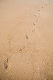 Footprints in the sand by a road Royalty Free Stock Photos