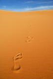 Footprints on the sand, Sahara desert, Libya Royalty Free Stock Photography