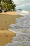 Footprints in the sand on the samui beach Stock Images