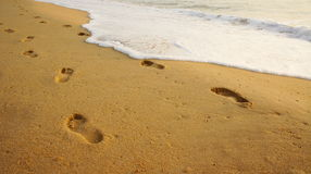 Footprints on the sand by the sea. Royalty Free Stock Photography