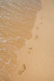 Footprints on sand of sea beach Stock Photography