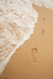Footprints on sand of sea beach Stock Images
