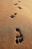 Footprints on sand of sea beach. Summer Royalty Free Stock Photo