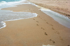 Footprints in the sand by the sea Stock Image
