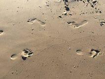 Footprints at the sand Stock Photos