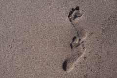 Footprints in sand, sunny day Royalty Free Stock Photo
