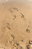 Footprints in the sand at sunset. Footprints in the sand on the beach Royalty Free Stock Photography