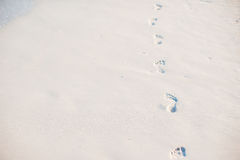 Footprints in the sand at sunset. Footsteps on the shore. Royalty Free Stock Photos