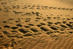 Footprints on Sand at Sunset Stock Photography