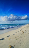 Footprints in the Sand. Trail of footprints in the sand on tropical beach Stock Photo