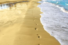 Footprints and sand tropical beach royalty free stock photo