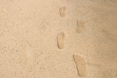 Footprints on the sand. At the tropical beach beach, sea Stock Photography