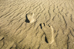 Footprints in the Sand royalty free stock photo