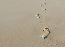 Footprints in sand. Walking alone - footprints in the sand Stock Photo