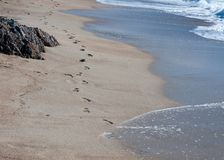 Footprints in the sand, washed away by waves Stock Photos