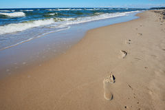 Footprints in sand. Footprints on the way Stock Images