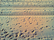 Footprints in the sand from the wheels and feet Stock Image