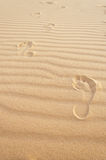 Footprints in the sand. White sand dunes. Mui Ne.  Stock Photos