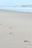 Footprints on a sandy beach Stock Image