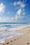 Footprints in sandy beach Stock Photography