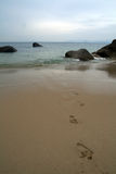 Footprints on a sandy beach, Stock Photo