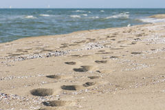 Footprints on a sandy beach at the edge of sea Stock Image