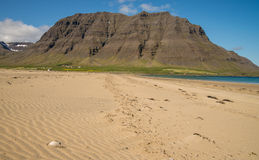 Footprints on sandy beach in Iceland Stock Photography