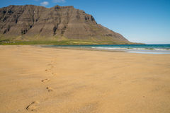 Footprints on sandy beach in Iceland Stock Images