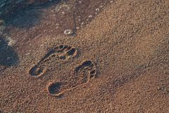 Footprints on a sandy beach Royalty Free Stock Images