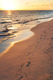 Footprints on sandy beach at sunrise Royalty Free Stock Photos
