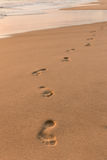 Footprints on sandy beach at sunrise Royalty Free Stock Photo