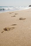Footprints on a sandy beach. Tracks of a person walking on a beach with waves already washing them away Royalty Free Stock Photography