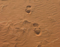 Footprints on sandy desert Stock Photos