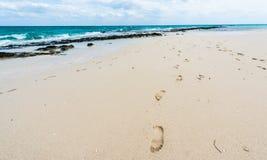 Footprints on a sandy ocean beach Stock Photos