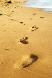 Footprints on the sea beach Royalty Free Stock Photos