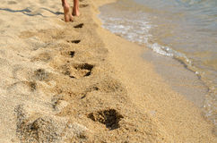Footprints on Sea Shore Royalty Free Stock Photo