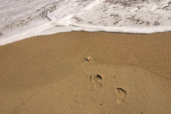 Footprints and Seafoam. Set of footprints head into the sea with starfish on sand Stock Image