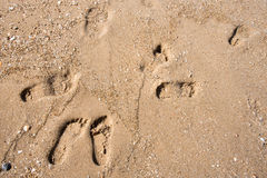 Footprints on a seashore sand beach Royalty Free Stock Image