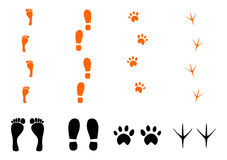 Footprints set. Silhouettes of traces feet, shoe, animal and bird on a white background Royalty Free Stock Photography