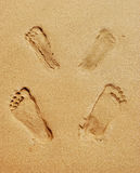 Footprints after sex on the beach Royalty Free Stock Photo