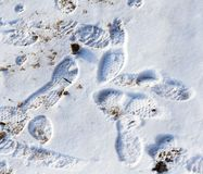 Footprints from shoes on snow as background Stock Photo