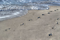 Footprints by the shore in Alghero Stock Image
