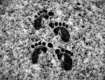 Footprints in the Snow 1 Stock Image