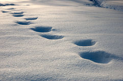 Footprints on the snow Royalty Free Stock Photos
