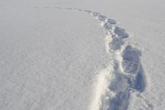 Footprints on snow Stock Photo