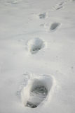Footprints on snow. Winter snow concept stock photography