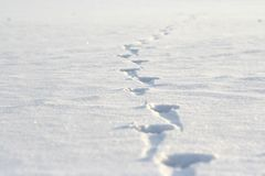 Footprints on the snow Royalty Free Stock Images