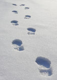 Footprints on the snow. Footprints on an immaculate expance of snow Royalty Free Stock Photos